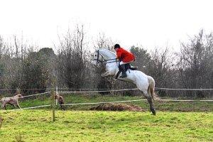 hntsman horse show tw 22716