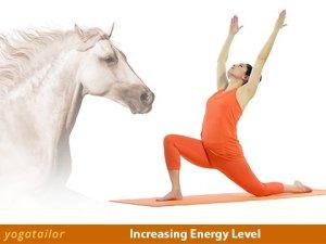 yoga energy horse tw 22716