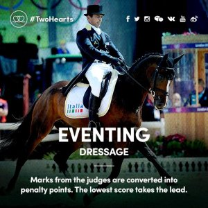 eventing dressage tw 6816