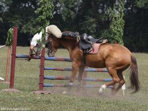 falling-off-a-horse-1_1000