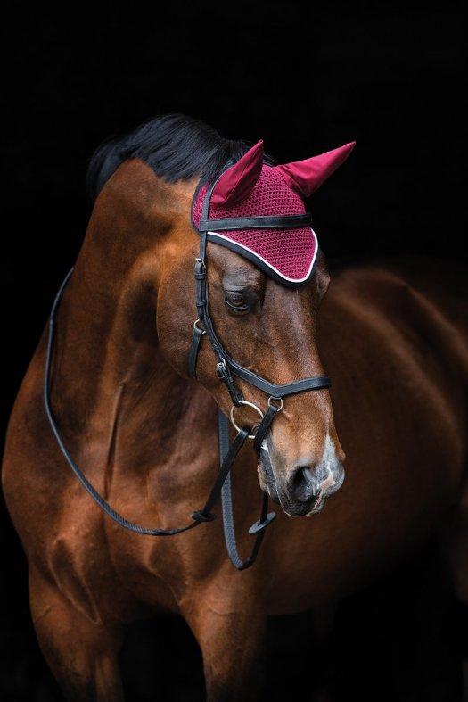 horseware tack