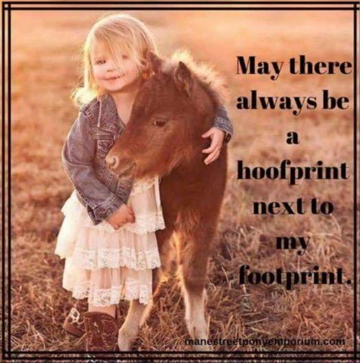 haydens hoof print