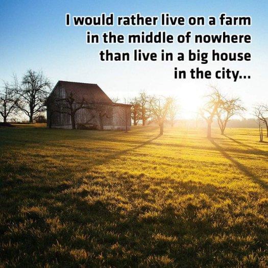 statelink farm